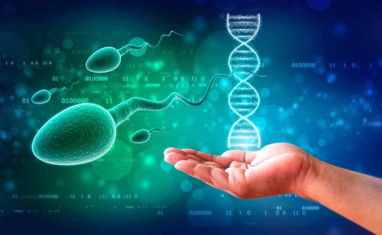 Genetica Personalidad
