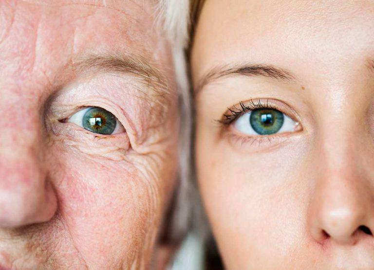 Telomeros Envejecimiento