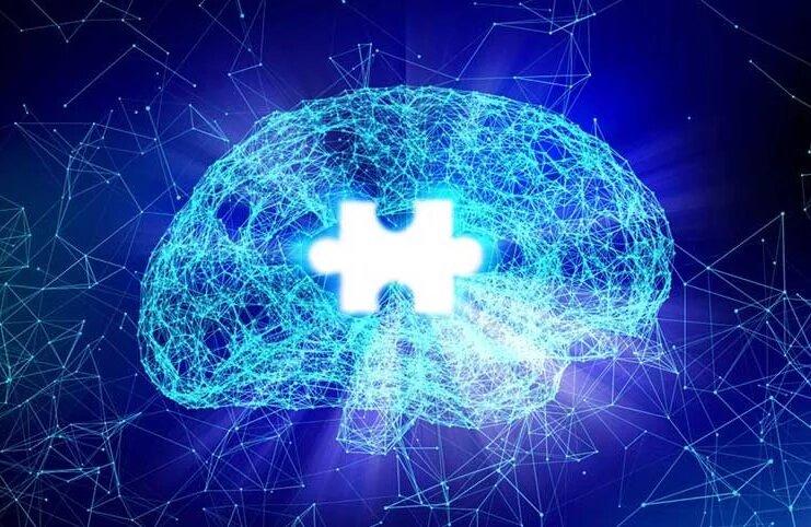 cerebro puzzle
